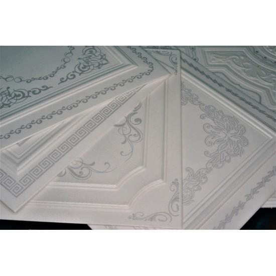 Gümüş 50x50 cm Tavan & Duvar paneli (F1-017 Gümüş)
