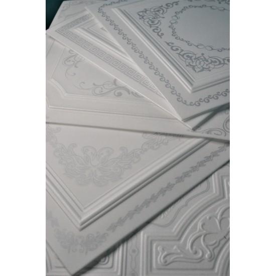 Gümüş 50x50 cm Tavan & Duvar paneli (RN-018 GÜMÜŞ)